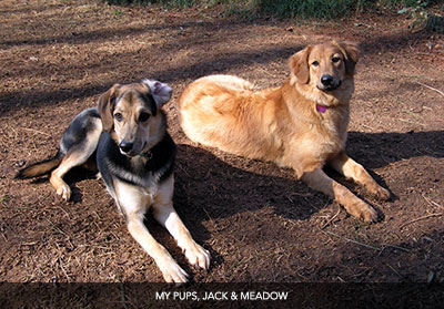 Jack and Meadow
